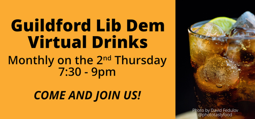 Guildford Lib Dem Virtual Drinks (Photo by David Fedulov @phototastyfood)