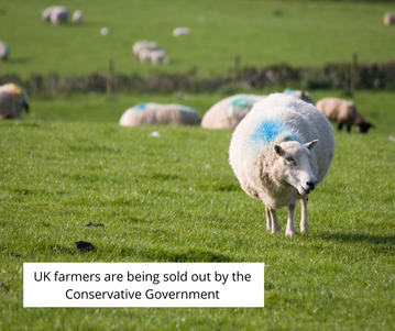 Gov has let UK farming down