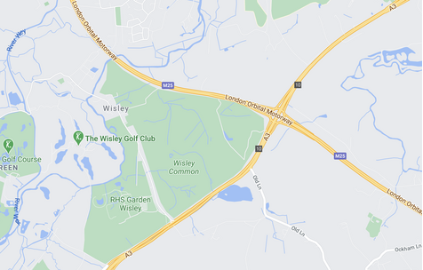 Wisley Junction Map